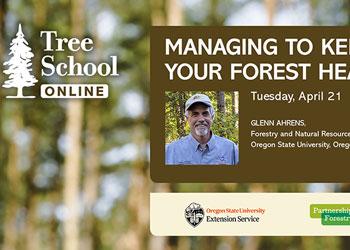 Tree School Online