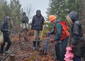 Tree Planting Workshop